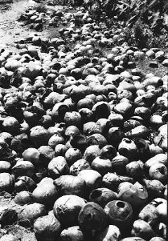 1990: KILLING FIELD