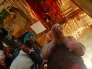 anutosh-deb_golden-temple-amritsar-25